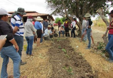 Prefeitura promove I curso de agricultura