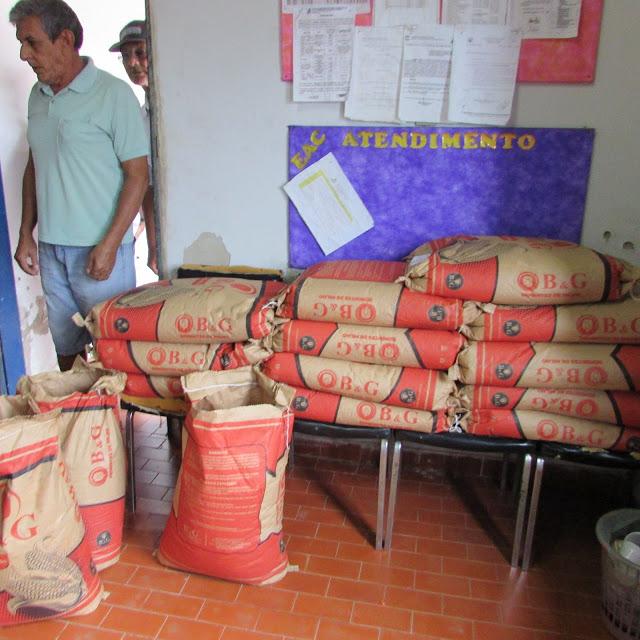 Mudas de caju com sementes de milho e feijão serão distribuídas em São João da Serra